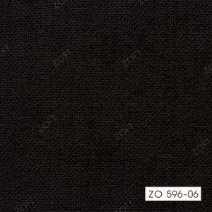 596-06