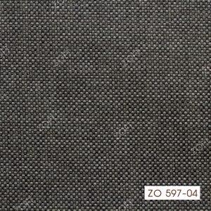 597-04