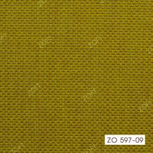 597-09