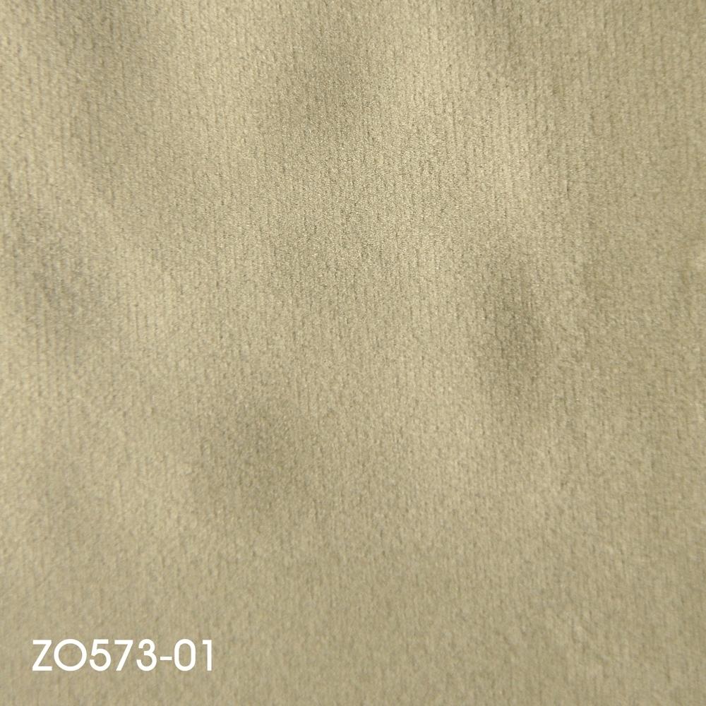 ZO573-01